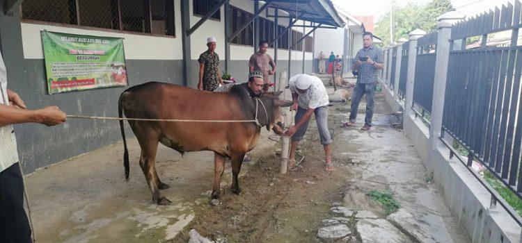 Hari Raya Qurban, Keluarga Besar MIN 11 Aceh Utara Sembelih Tiga Ekor Sapi